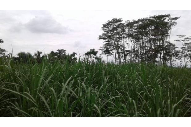 Rp8,23mily Tanah Dijual