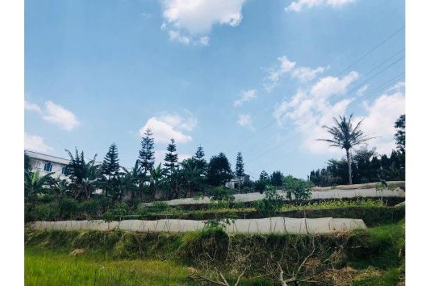 Rp30,2mily Tanah Dijual