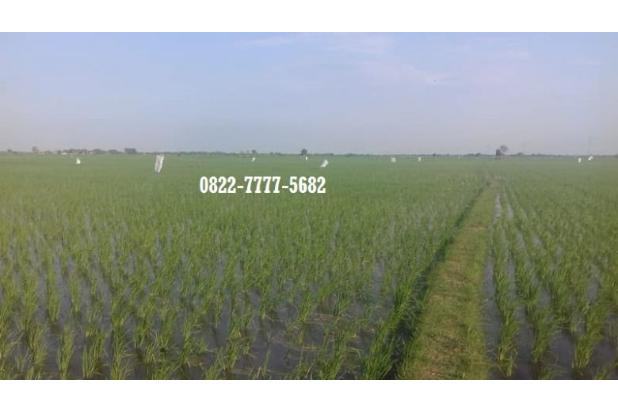 Rp9,29mily Tanah Dijual