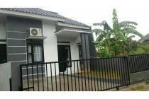Rumah Besar Harga Kecil Dekat Unila