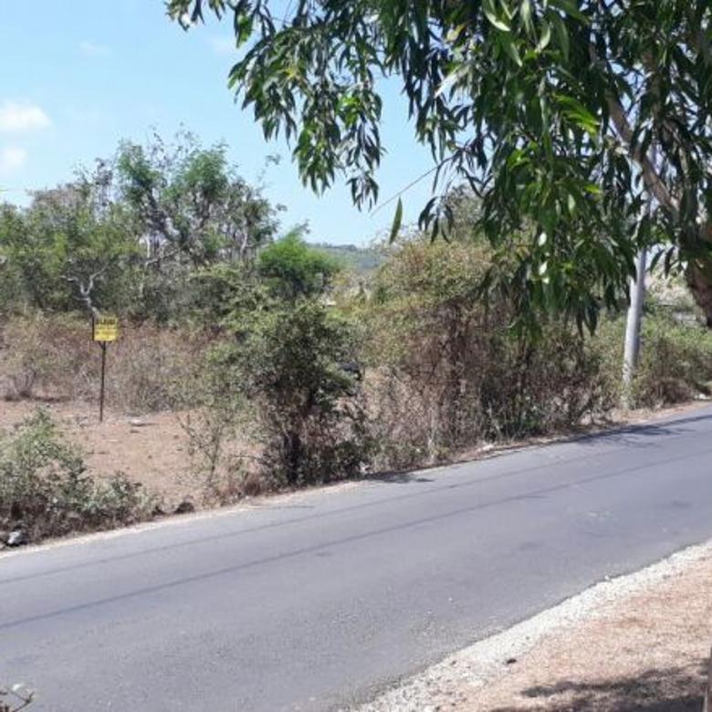 Tanah Jual 1 HA di Jalan Utama Pantai Balangan
