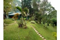 Vila-Bogor-9