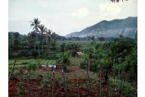 Tanah murah nyaman View gunung di Ciampea Bogor