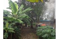 jual tanah di depok jalan nangka beji belakang universitas indonesia