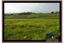 Tanah-Tabanan-3