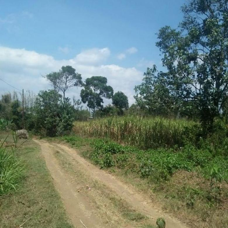 Tanah luas harga sangat murah di kota Malang