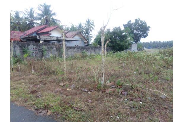 Kaveling Tanah Ukuran Kecil, Akses Jalan 6 Meter, Dekat Bandara Baru Pula 13245648