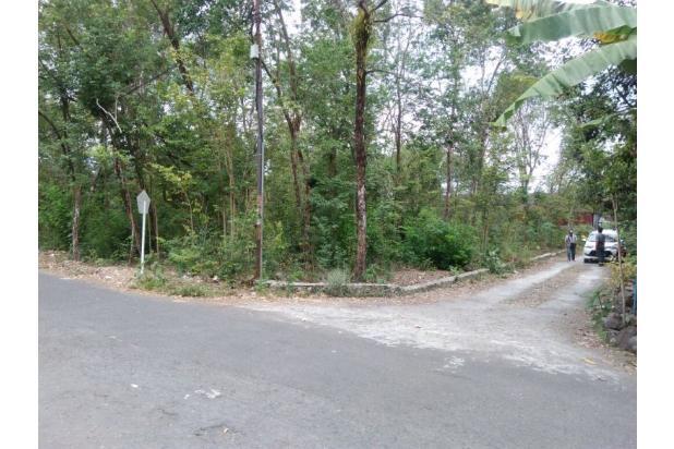 Kaveling Tanah Ukuran Kecil, Akses Jalan 6 Meter, Dekat Bandara Baru Pula 13245652