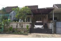 Rumah Asri dan Hijau di Medang Lestari