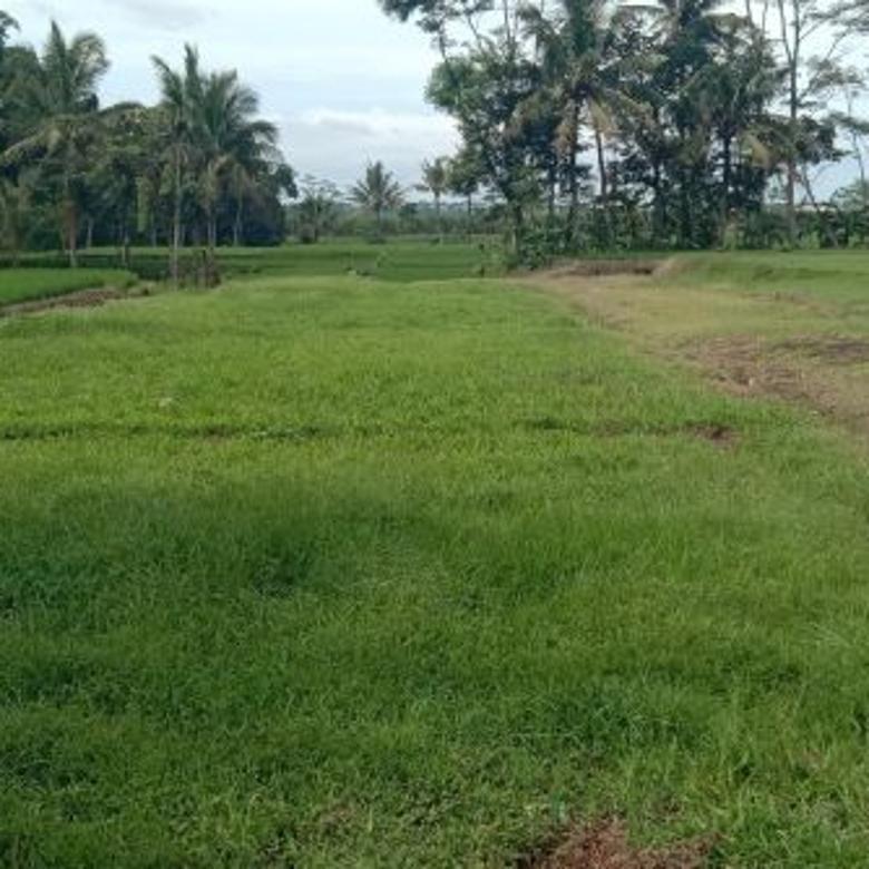 Tanah strategis 74 m² poros jalan mendalan wangi Wagir -Malang