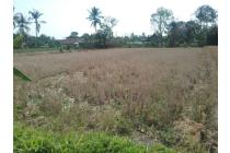 Tanah Murah Mangku Jalan Dekat Kaliurang(F.1229)