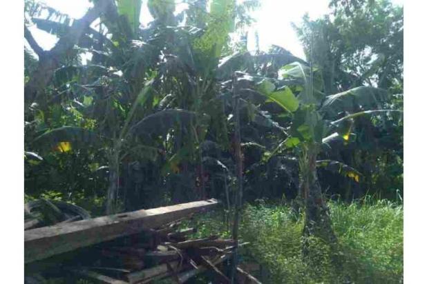 KAVLING di Daerah Cipondoh Tangerang 7186021