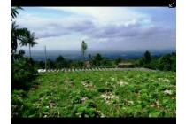 Tanah-Sukabumi-6