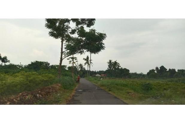 Rp381jt Tanah Dijual