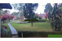 Dijual Villa Mewah di Citeko Puncak untuk peristirahatan keluarga besar.
