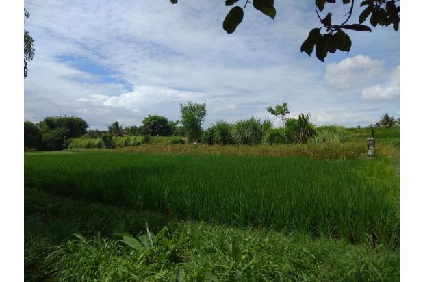 Rp54,6mily Tanah Dijual