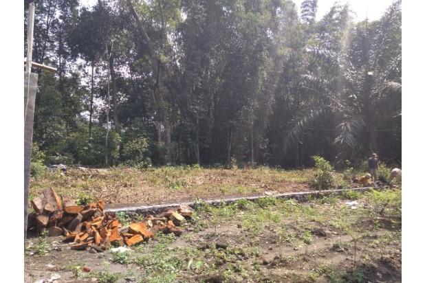 Beli Kaveling Bangun Rumah Sendiri, Hemat 40 % KPR 16577555