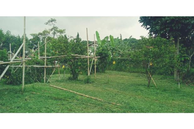 Rp308mily Tanah Dijual