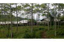 Dijual Tanah Kebun Jabon bersama Villa