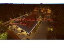 Rumah Nyaman bonus Homestay di Boyolali