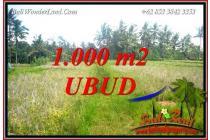 Affordable 1,000 sqm in Ubud Pejeng