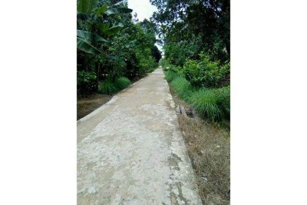 tanah jl. karya buka tanah 40x360m. akses jalan cor beton 10269941