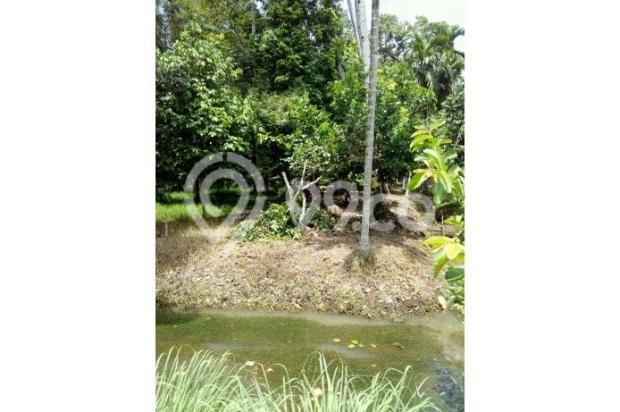 tanah jl. karya buka tanah 40x360m. akses jalan cor beton 10269944