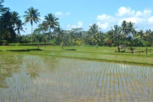 Rp5,76mily Tanah Dijual