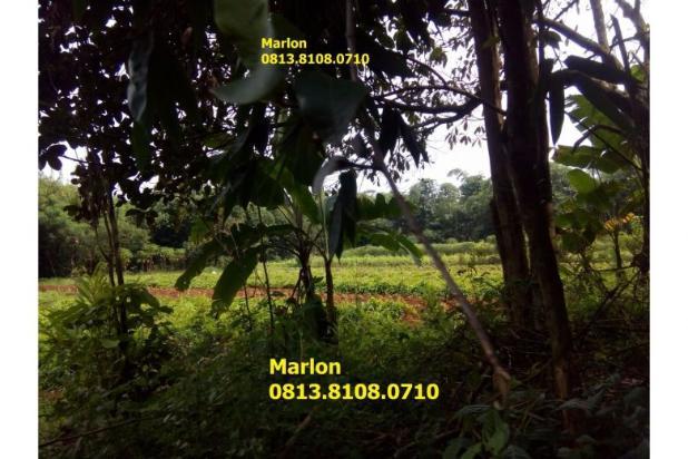 Tanah untuk Komersial & perumahan ( 50 ha) di Cisauk. Lokasi strategis 6880124