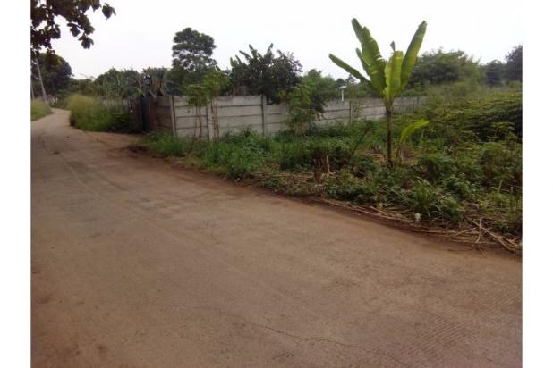 Tanah untuk Komersial & perumahan ( 50 ha) di Cisauk. Lokasi strategis 6880125