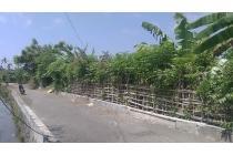 Tanah Penyaringan Sanur # Batur Sari kutat lestari tunggak bingin