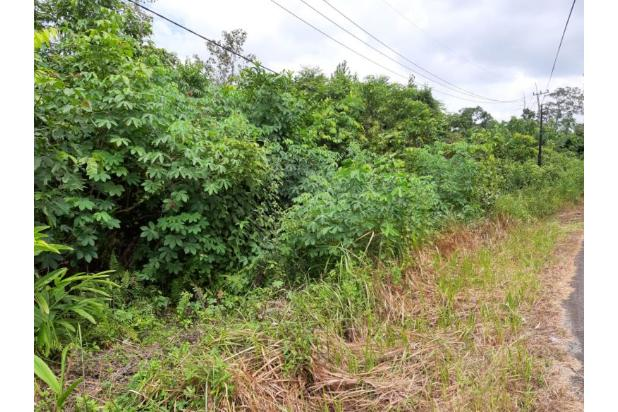 Rp6,49mily Tanah Dijual