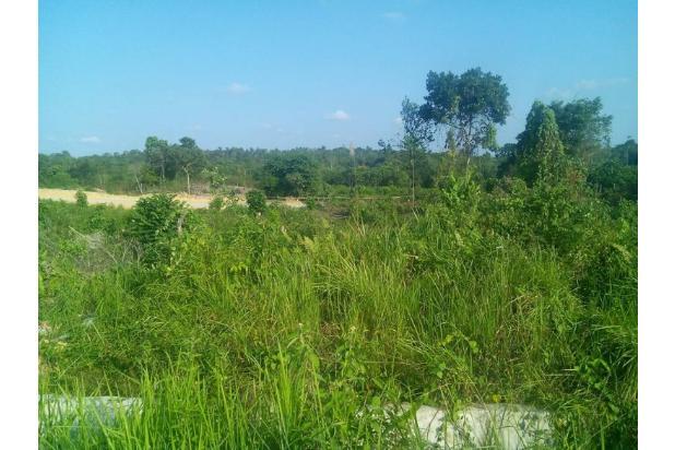 Rp6,34mily Tanah Dijual