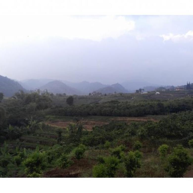 Tanah dijual view sangat istimewa dekat wisata selecta