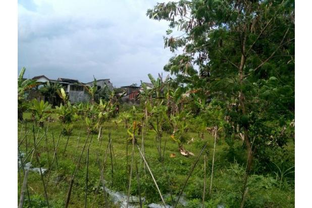 Tanah Kaveling Lojajar: Bangun Rumah Lebih Murah 150 Jt 17700205