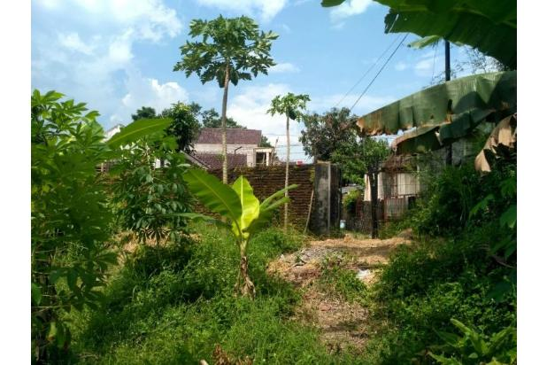 Tanah Kaveling Lojajar: Bangun Rumah Lebih Murah 150 Jt 17700204