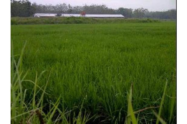 Rp9,57mily Tanah Dijual