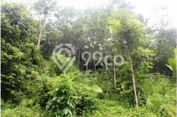 Dijual Kavling Luas di Kawasan Martadinata, Lampung 4059106