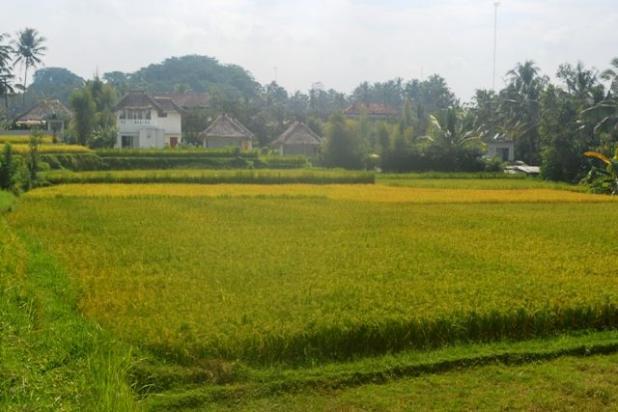 Rp4,12mily Tanah Dijual
