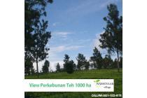 Vila-Cianjur-3