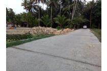 Tanah Matang 100-an M2: Cash Tempo 12 X, Kulon Progo