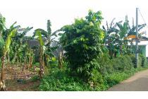 Tanah di Mustika Jaya cocok untuk dibangun kontrakan