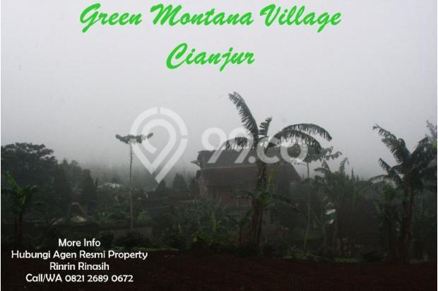 Tanah Kavling di Cipanas Dijual - SHM 17327148