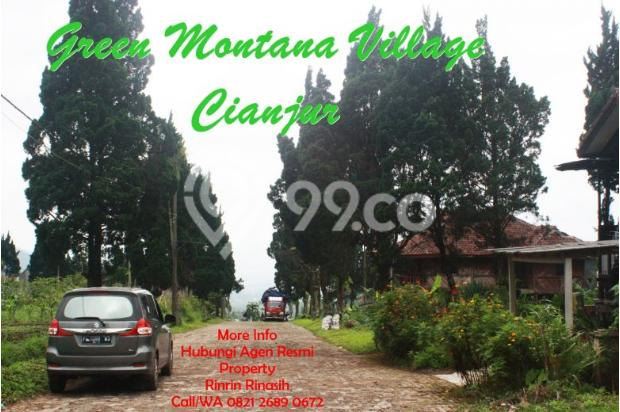 Tanah Kavling di Cipanas Dijual - SHM 17327150