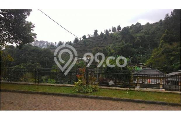 Villa Asih 4 kamar di Cisarua Puncak 5355972