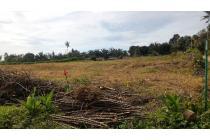 Tanah pertanian Kab. Simalungun Sumatera Utara