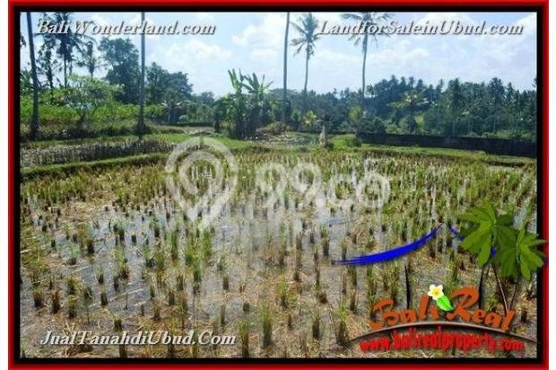 View Tebing link Villa 6,300 m2 di Sentral Ubud 18273750