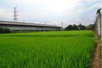 Tanah Di bekasi Jalan Harapan Jaya cocok untuk Pergudangan