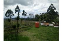 Vila-Bandung Barat-18