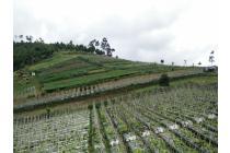 Vila-Bandung Barat-19
